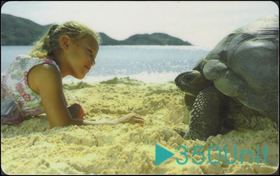 人龜互動2