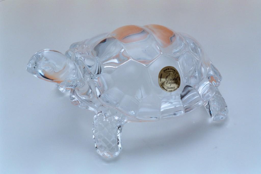 115透明水晶陸龜