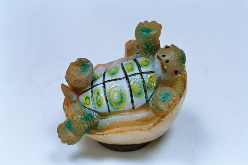 244波麗磁鐵烏龜