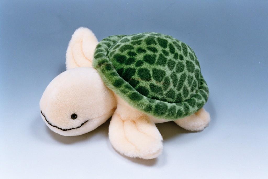 334絨毛海龜