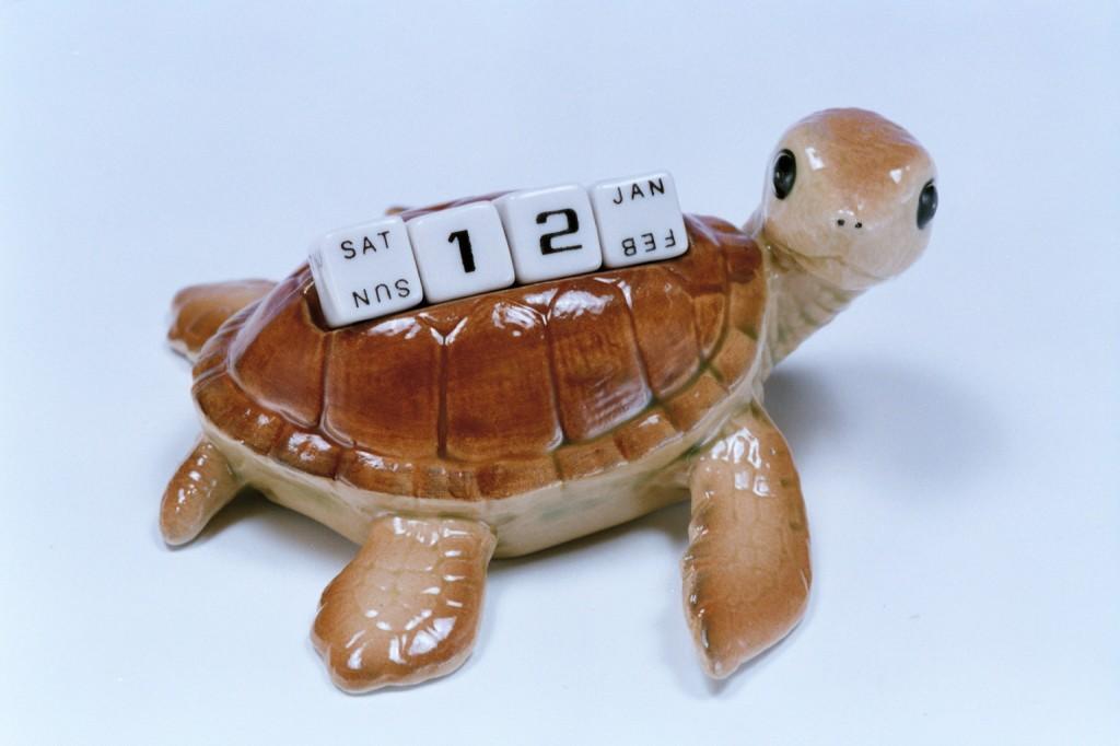 438海龜萬年曆
